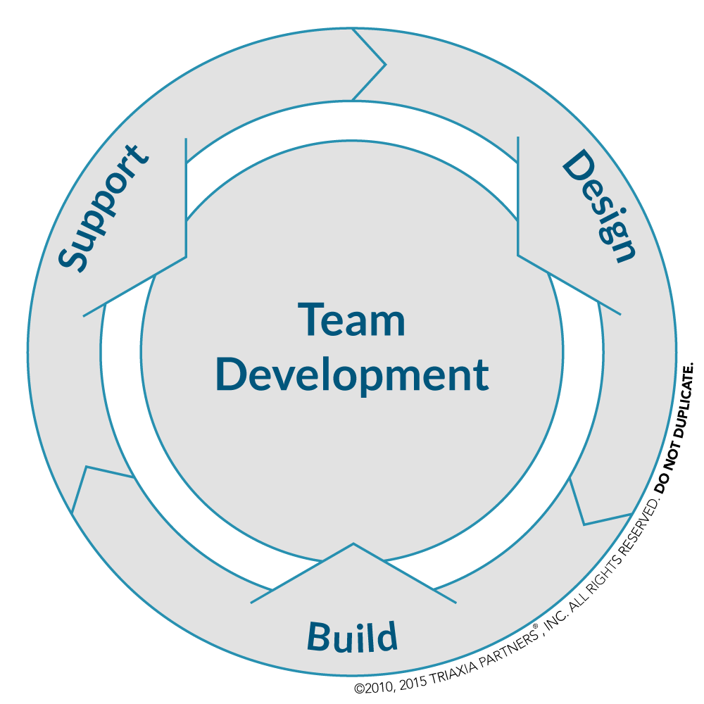 Triaxia Partners Team Development Model