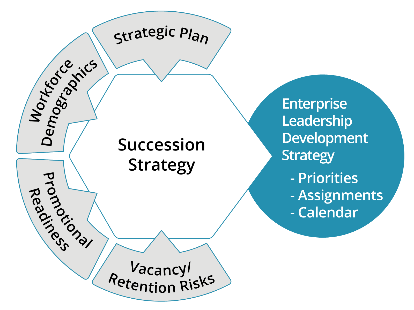 Triaxia's Succession Strategy Model