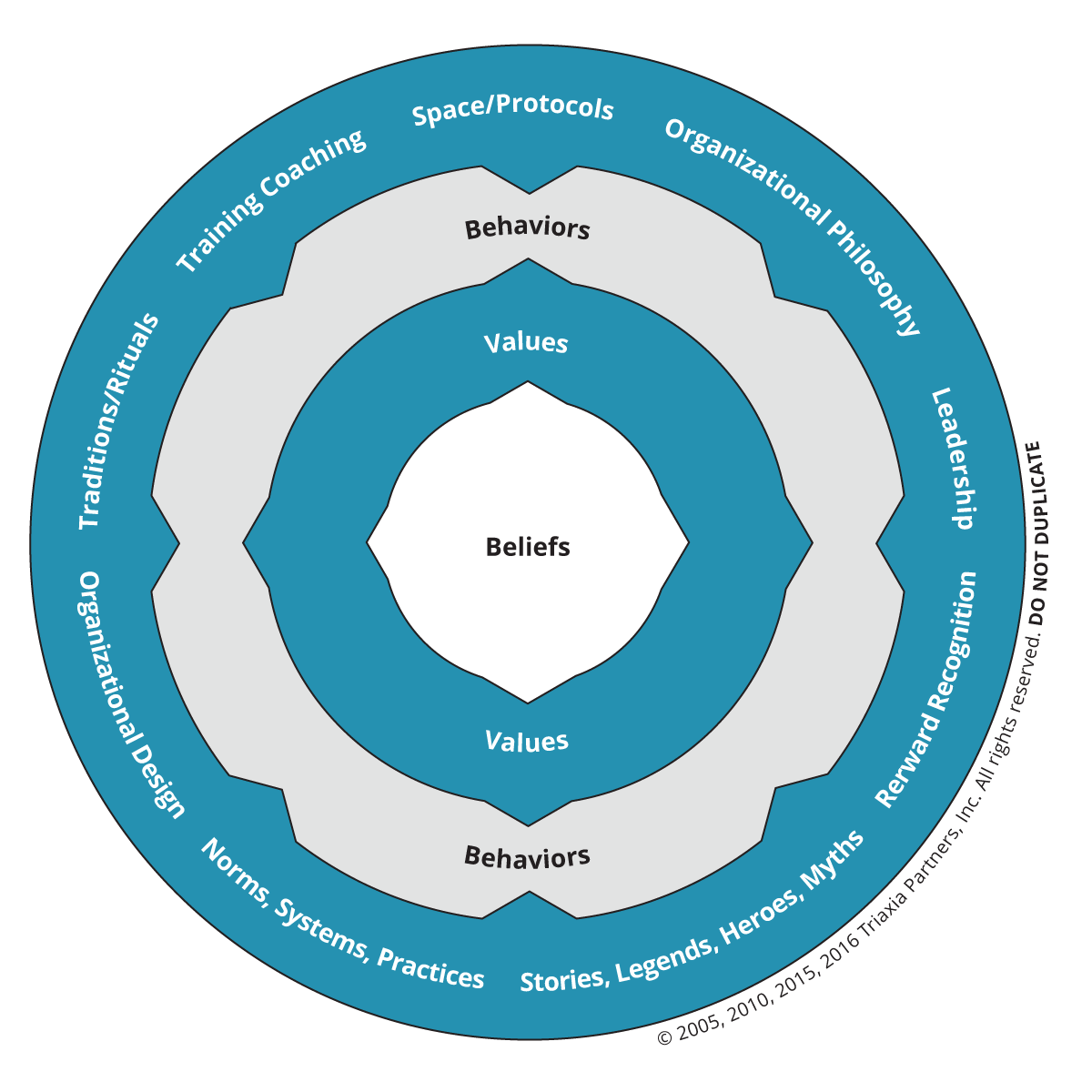 Triaxia Partners Organizational Culture Model